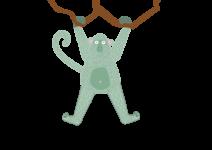 Monkey_-hanging_2
