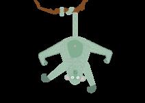 Monkey_-hanging_3